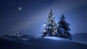 Julgran blå bild